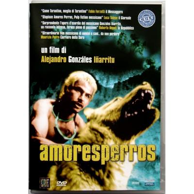Dvd Amores perros di Alejandro González Iñárritu 2002 Usato