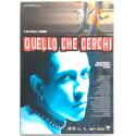 Dvd Quello che Cerchi di Marco S. Puccioni 2002 Usato