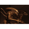 Action figure Alien Resurrection - Xenomorph Warrior Neca